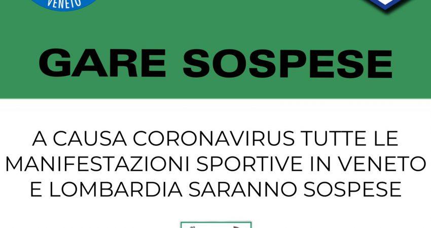 Allarme Coronavirus (malattia COVID-19)